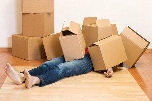 qld removalist insurance